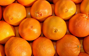 ORANGES - NAVEL (USA)