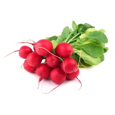 RADISH - FRESH BUNCH