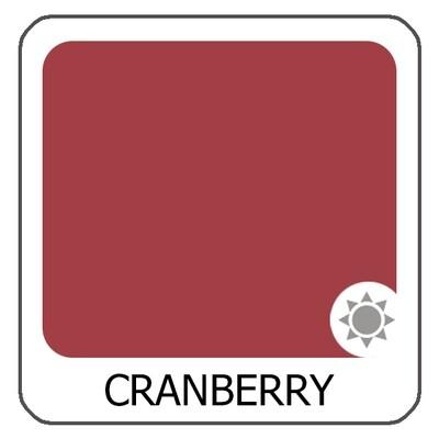 Cranberry гелевый пигмент Organic Line Amiea