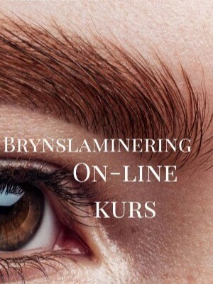Brynslaminering on-line kurs