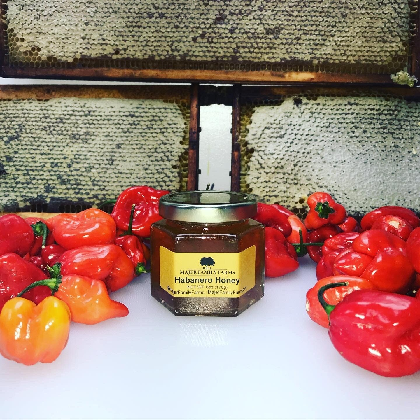 Habanero Infused Michigan Honey (6oz)