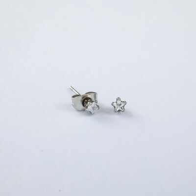 Silverland Stainless Steel White Zirconia Stone Star Shape Earring