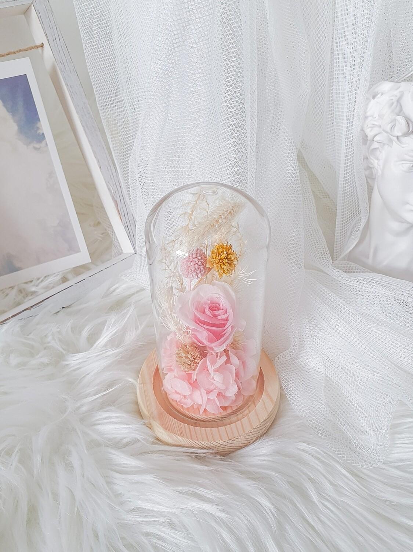 Mini Dome Baby Pink
