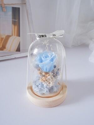 Mini Dome Blue