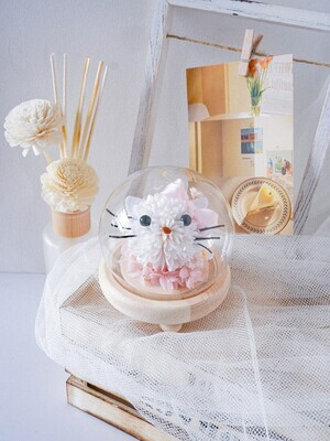 Hello Kitty Dome