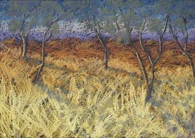 Bushfire i - 35 x 50cm photographic print