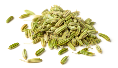 Fennel Seeds (Plain)