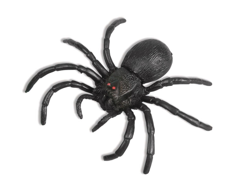 """6.5"""" Spider"""
