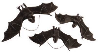 Flocked Bat