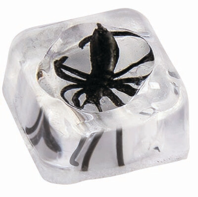 Spider in Ice Cube Set