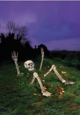 Light Up Skeleton From Ground