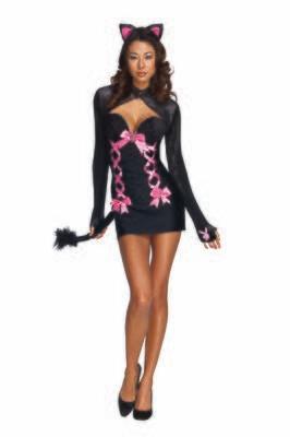 Playboy Cat