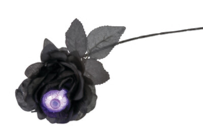 Rosy Eyed - Black