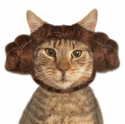 Princess Leia Cat Buns