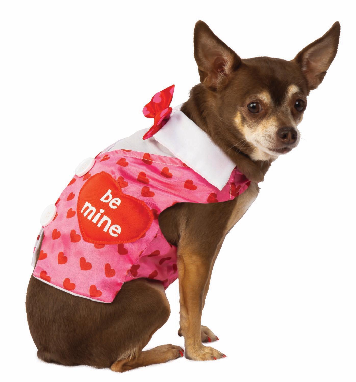 Valentine Day Sweetheart Pet Vest