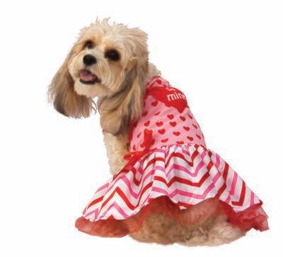 Sweetheart Pet Dress Costume