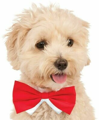 Red Bow Tie Pet Costume