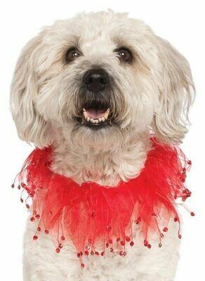 Pet Red Fancy Collar