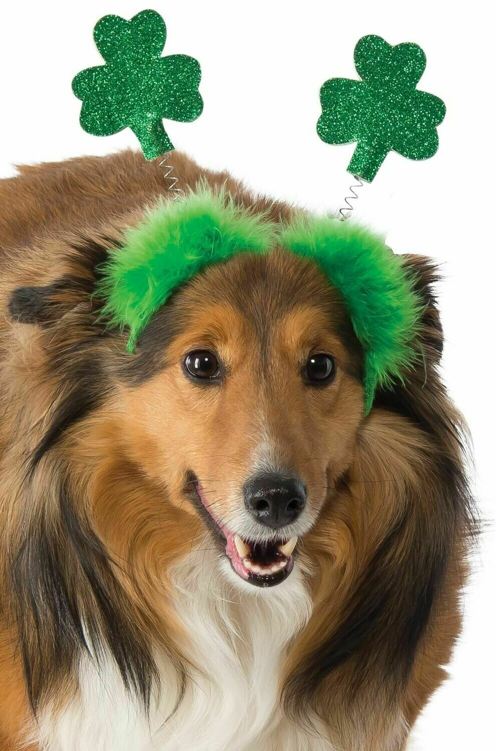 St. Patrick's Boppers