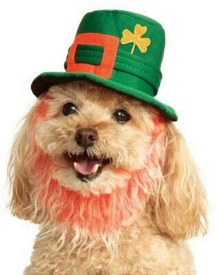 St. Patrick's Day Hat With Beard