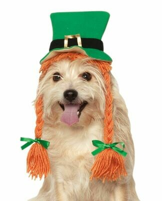 St. Patrick's Day Hat With Braids