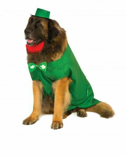 Big Dog Leprechaun Costume