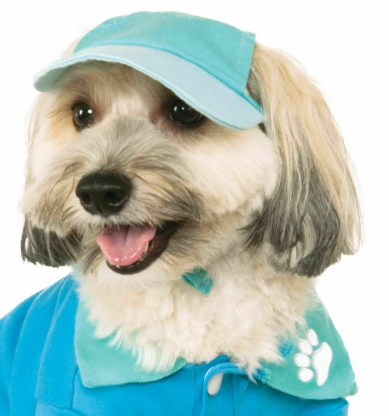 Pastel Baseball Cap Pet Costume