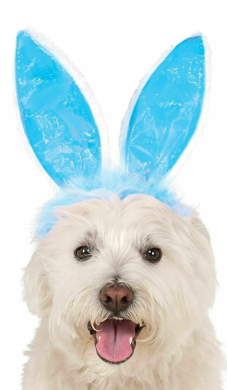 Blue Bunny Ears Pet Costume