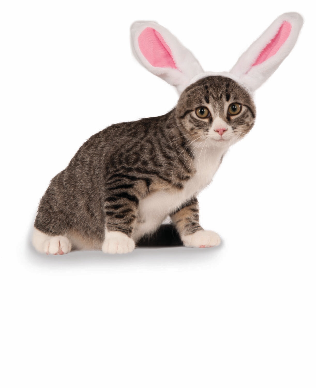 Pet Rabbit Ears Headband