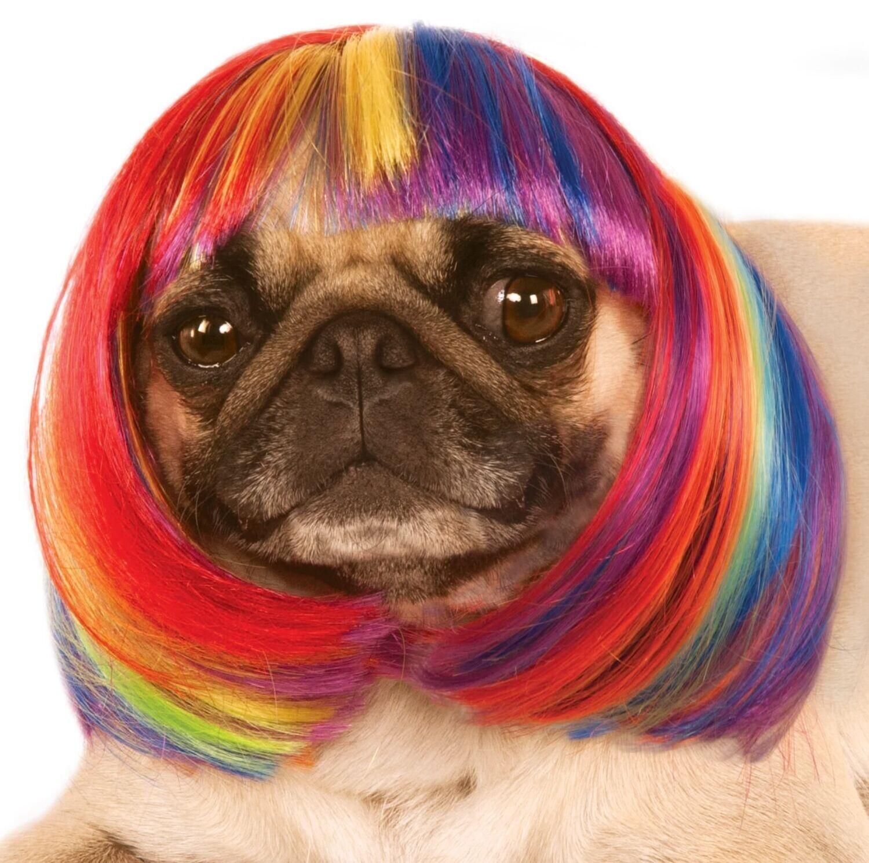 Rainbow Wig Pet Costume