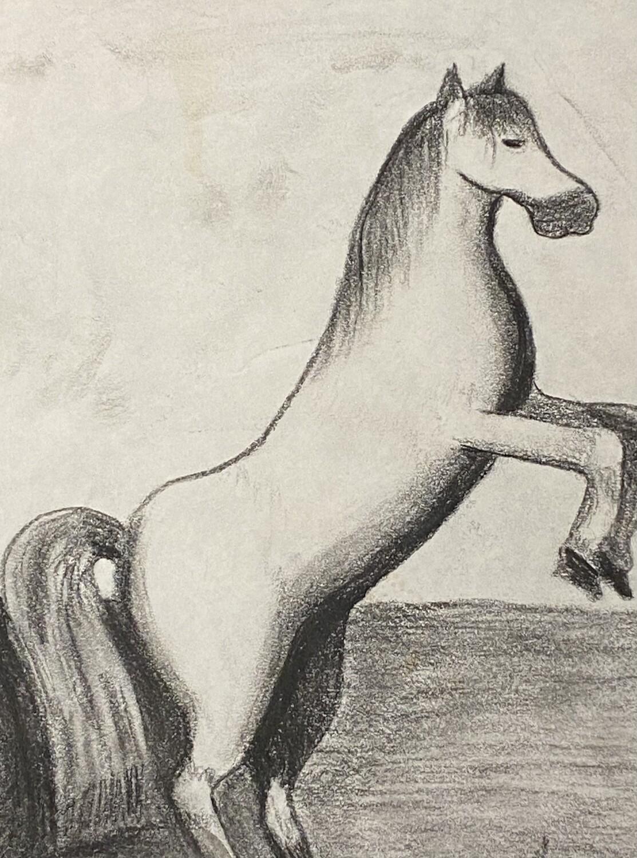 Horse Charcoal Studies
