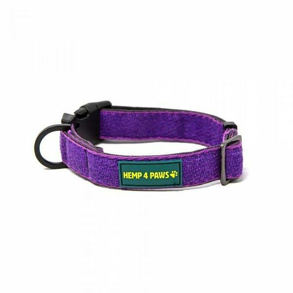HEMP 4 PAWS - Hemp Dog Collar - Purple - Small