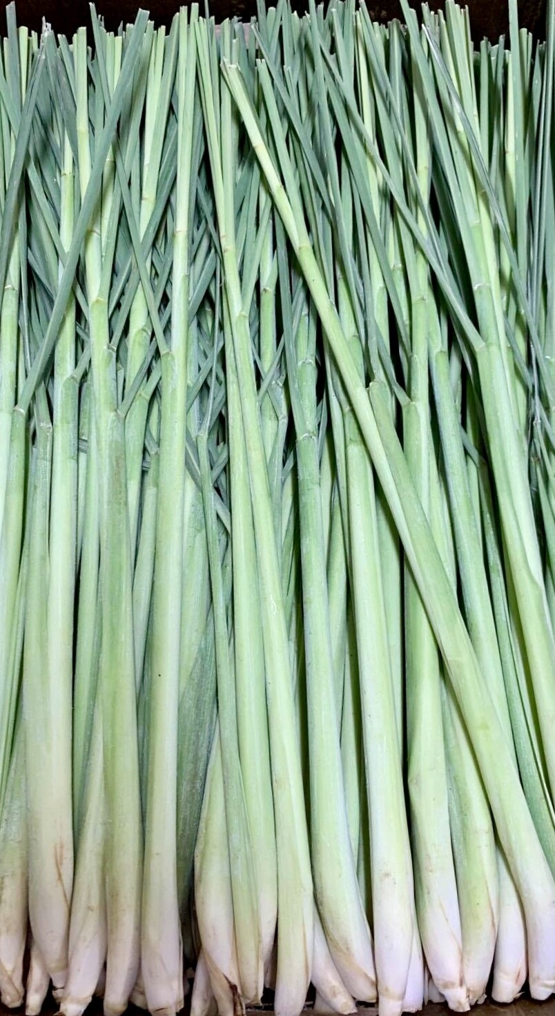 3 Stalks Lemon Grass
