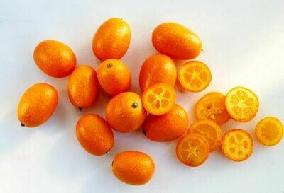 Kumquait