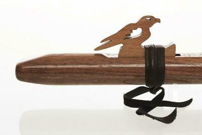 Sparrow Hawk - A - Walnoot