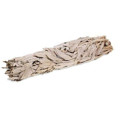 Witte Salie Smudge Stick