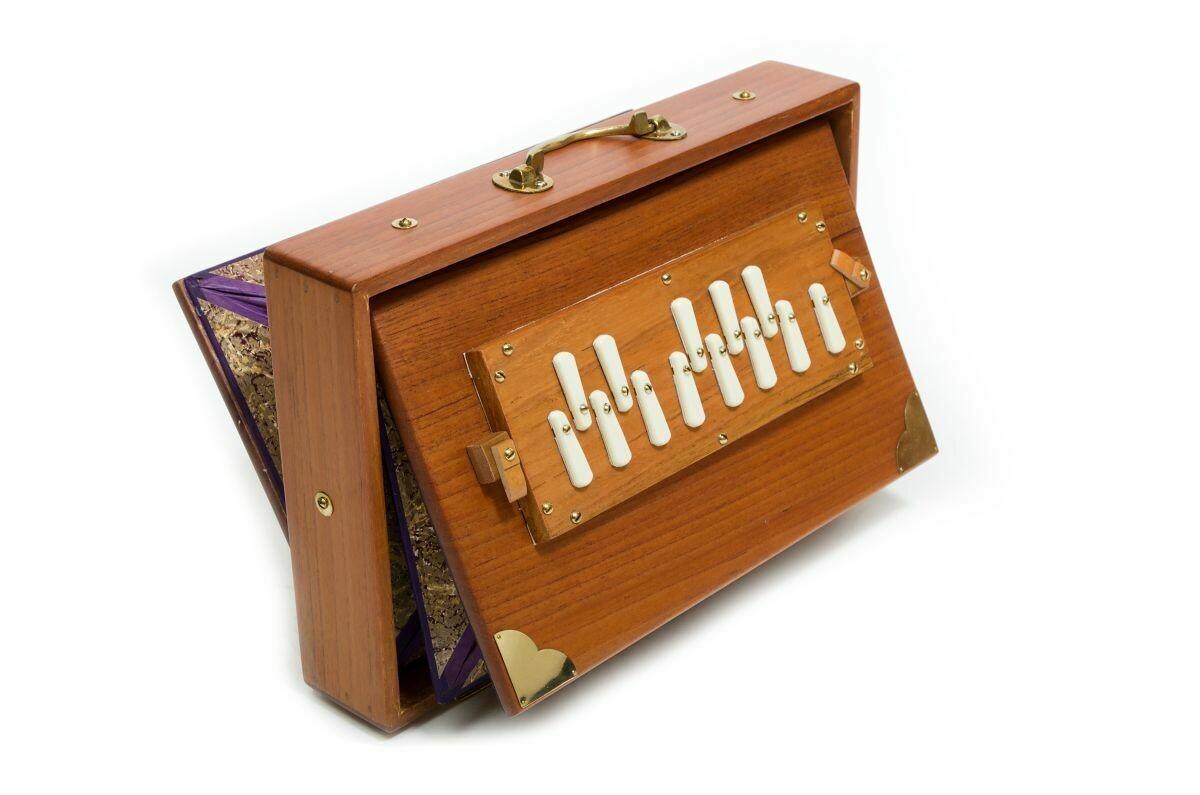 Shruti Box in C - Monoj Kumar Sardar - medium