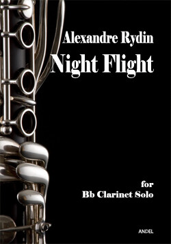 Night Flight - Alexandre Rydin