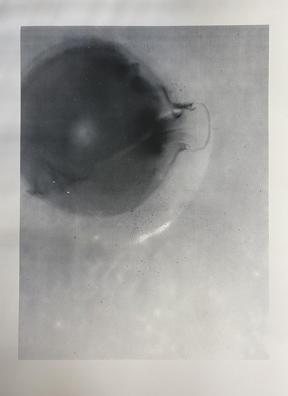 Form + Shape, Untitled 3