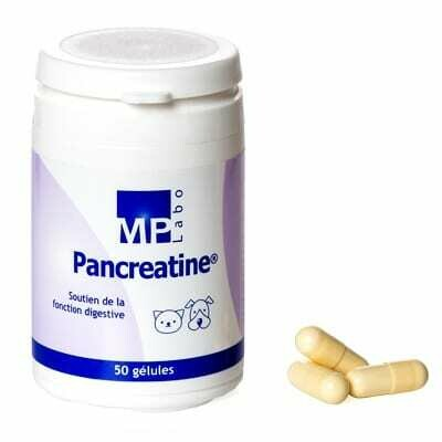 Pancreatine 50 comprimés