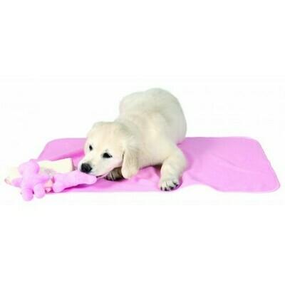 Puppy kit met deken, handdoek & 2 speeltjes