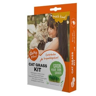 Kattengras Kit