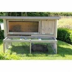 Berkengrijs konijnenhok met ren