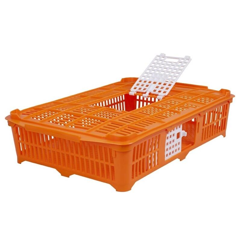 transportkist voor duiven / kwartels / kuikens