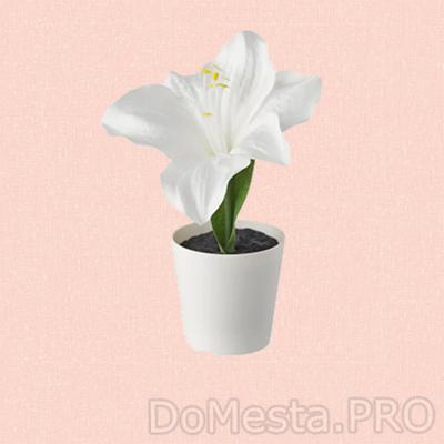 ВИНТЕРФЕСТ Искусственное растение и кашпо, Амариллис белый, 6 см