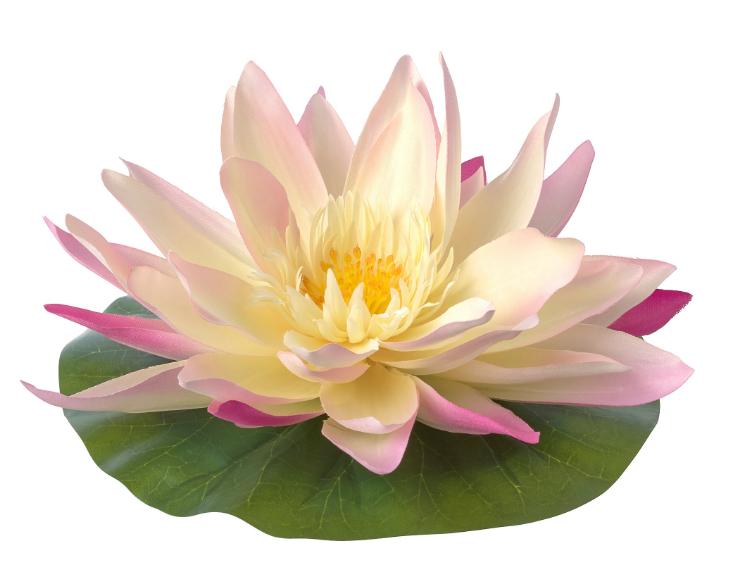 СМИККА Искусственный цветок, плавающий, д/дома/улицы Водяная лилия