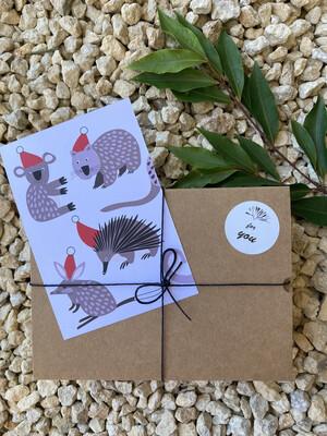 Australian Flora & Fauna Gift Box