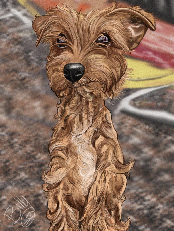 Digital Pet Caricature