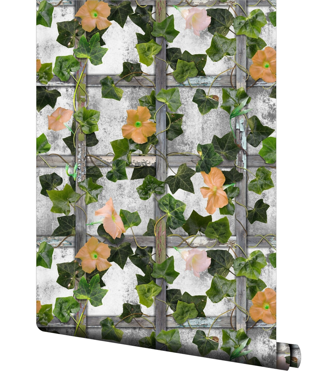 Enchanted Ivy Wallpaper
