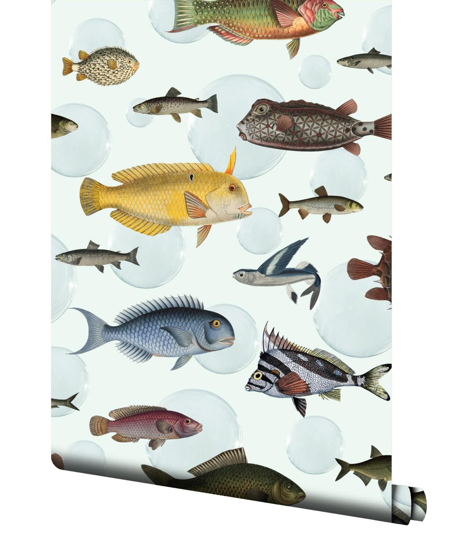 Shoal Wallpaper